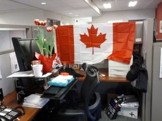 Surprise! This is how Gina found her work space when she returned from the ceremony!
