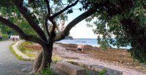 The Bar Harbour Shore Path