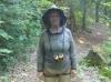 Bug gear