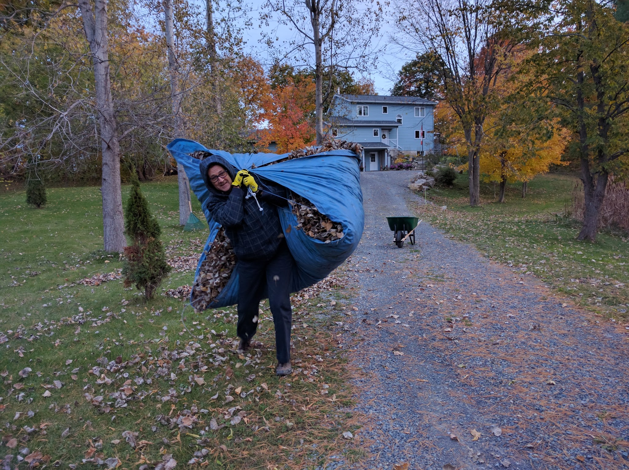 Moving those leaves