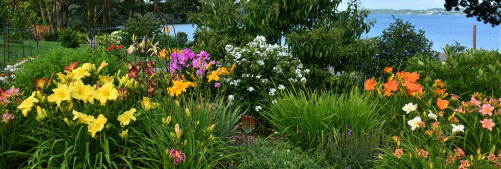 Van Berlo Gardens, Maitland