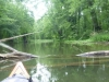 The Beaver River - obstacles!