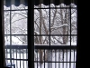 Looking out on winter