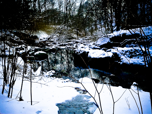Winter Ravine Walk January 2012