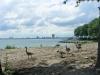 Toronto Shore