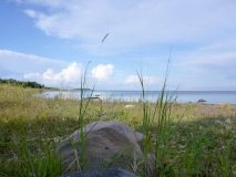 Wikwemikong shore