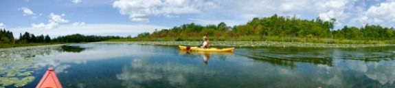 Paddling the Kagawong River